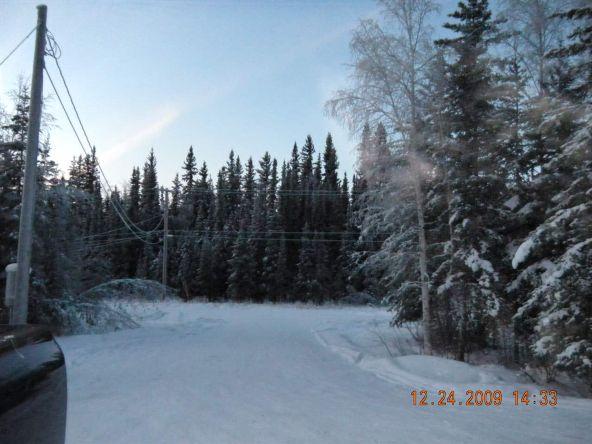 1020 Water Thrush Dr., Fairbanks, AK 99709 Photo 12