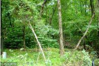 Home for sale: Calmes Neck, Boyce, VA 22620