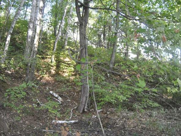 Lot 12 Sunset Dr., Tomahawk, WI 54487 Photo 36