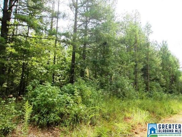 3.27 Acres Thomas Ln., Ashland, AL 36251 Photo 4