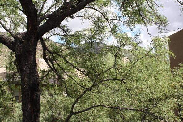 6655 N. Canyon Crest, Tucson, AZ 85750 Photo 22