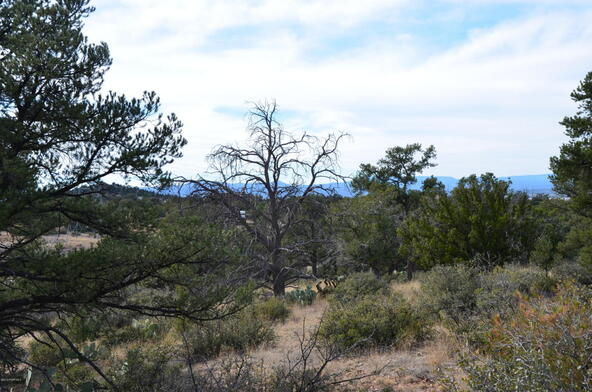 13991 N. Grey Bears Trail, Prescott, AZ 86305 Photo 24