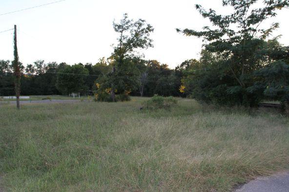 1 del Ware Ln., Delaware, AR 72835 Photo 3