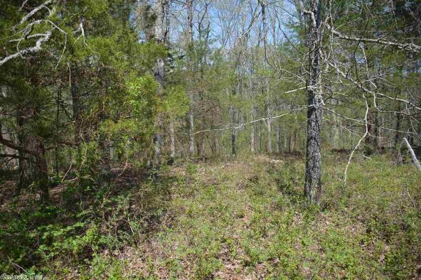 9 Ac Brownsville Rd., Greers Ferry, AR 72067 Photo 4