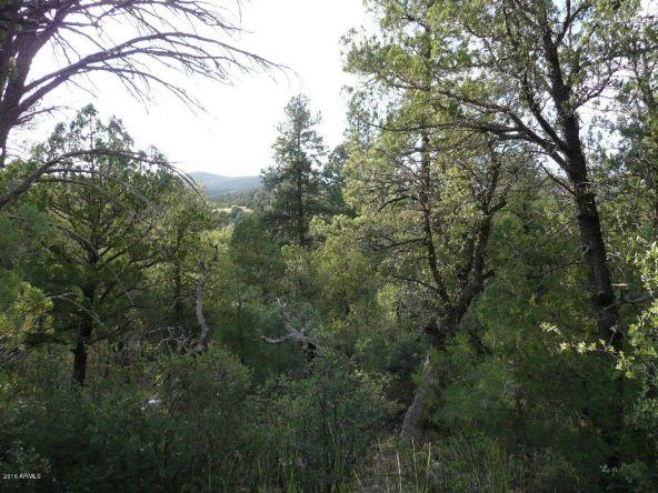 8b N. Chamberlain Trail, Young, AZ 85554 Photo 3