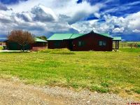 Home for sale: 50 E. Homestead Rd., Norwood, CO 81423