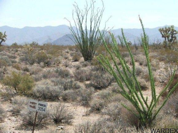 3054/58 Dateland Rd., Yucca, AZ 86438 Photo 13
