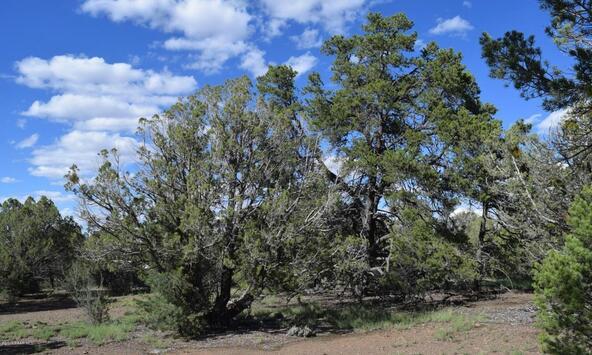 76+83+92 Shadow Rock Ranch, Seligman, AZ 86337 Photo 28