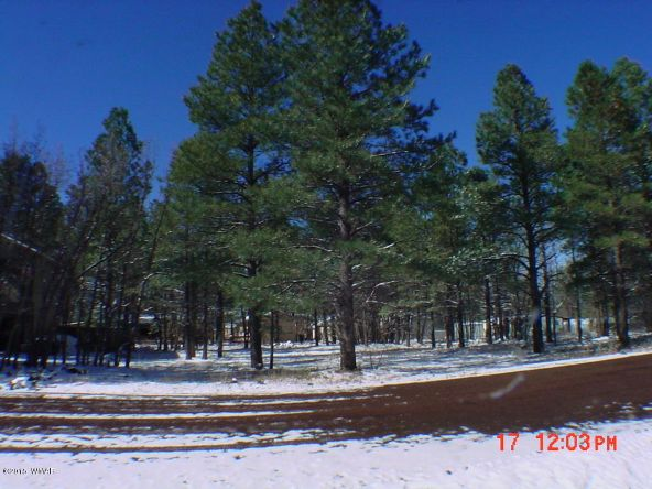 4102 Bridle Path Cir., Pinetop, AZ 85935 Photo 1
