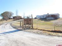 Home for sale: 20828 E. Rd., Delta, CO 81416