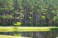 Home for sale: 380 Autumn Pheasant Loop N.W., Calabash, NC 28467