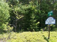 Home for sale: 000 Gouldsboro Point Rd. & Rt. 1, Gouldsboro, ME 04607