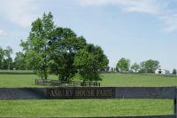 Home for sale: 913 Aiken Rd., Versailles, KY 40383