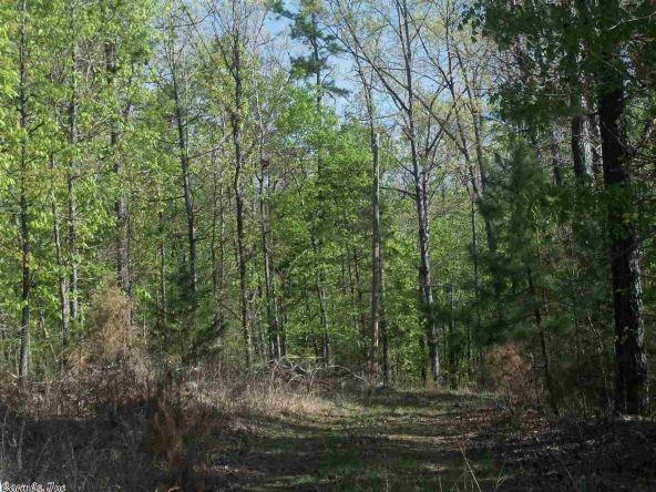 44 Pine Trail, Higden, AR 72067 Photo 2
