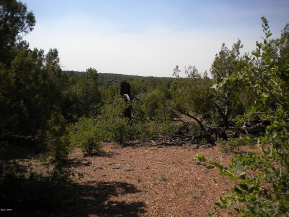 1853 Woolford Rd., Pinedale, AZ 85934 Photo 9