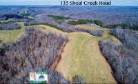 Home for sale: 135 Shoal Creek Rd., Leoma, TN 38468