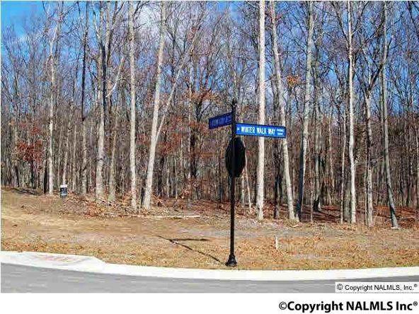 12 Winter Walk Way, Huntsville, AL 35803 Photo 3