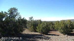 662 E. Running Bear Rd., Williams, AZ 86046 Photo 2