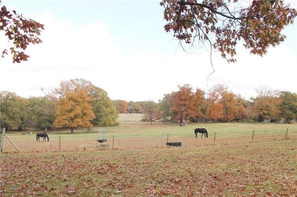18509 Parks Cemetery Rd., Winslow, AR 72959 Photo 51