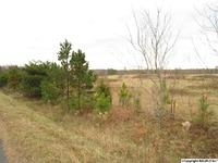 Home for sale: 0001 County Rd. 106, Mentone, AL 35984