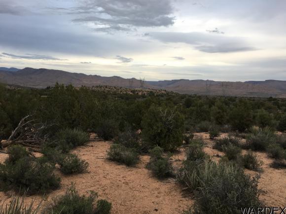 7340 N. Frerichs Ranch Rd., Hackberry, AZ 86411 Photo 5