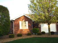 Home for sale: 815 Oriole Dr., Peotone, IL 60468