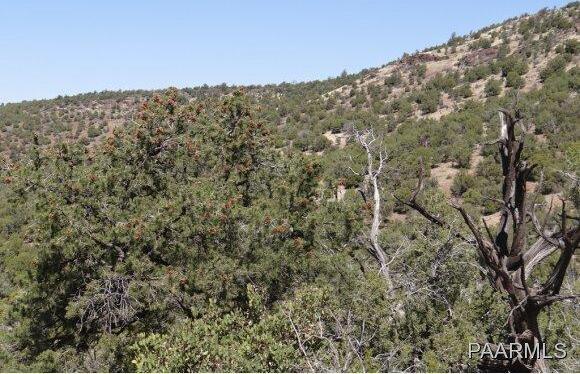 808 Sierra Verde Ranch, Seligman, AZ 86337 Photo 12