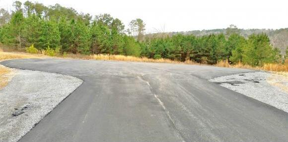 250 Co Rd. 907 (Lot 10), Crane Hill, AL 35053 Photo 4