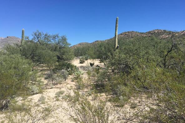 12441 E. Fireweed, Tucson, AZ 85749 Photo 7