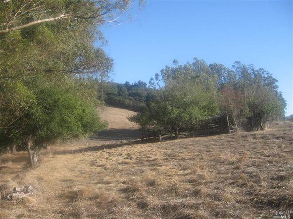 2875 Western Avenue, Petaluma, CA 94952 Photo 14