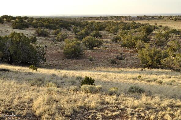 297 Woodridge Ranch, Concho, AZ 85924 Photo 19