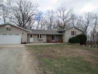 Home for sale: 9920 Burns Rd., Fenton, IL 61251