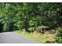 Home for sale: 24 Hazelwood Rd., Wurtsboro, NY 12790