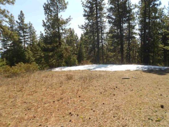Tbd Star Claim Tract 3, Idaho City, ID 83631 Photo 3