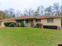Home for sale: 109 Louann Dr., Mountain Home, AR 72653