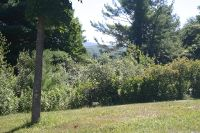 Home for sale: 105 North Plain, Great Barrington, MA 01230