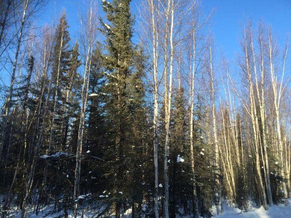 3790 N. Wyoming Dr., Wasilla, AK 99623 Photo 1