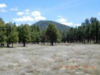Home for sale: 14030 E. Timber Ln., Parks, AZ 86018