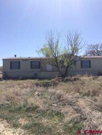 Home for sale: 67720 Kinikin Rd., Montrose, CO 81403