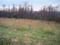 Home for sale: 00 Blueberry Hill Lot #29, Sturgis, KY 42459