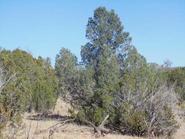 57154 N. Bridge Canyon Parkway, Seligman, AZ 86337 Photo 10