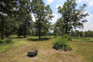 715 Moonlight Rd., Mammoth Spring, AR 72554 Photo 23