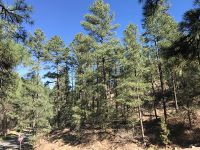 Home for sale: 500 Paradise Canyon Dr., Ruidoso, NM 88345