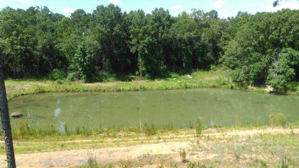 11744 County Rd. 53, Columbia, AL 36319 Photo 5