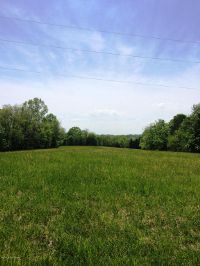 Home for sale: 0 Trout Ridge Rd., Bedford, KY 40006