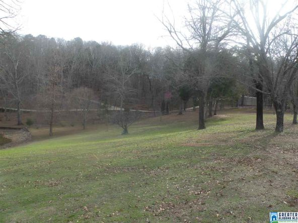 88 Black Acres Pt, Cropwell, AL 35054 Photo 7