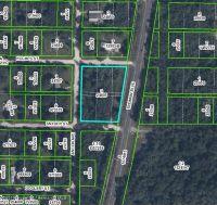 Home for sale: 0 Treiman Blvd., Ridge Manor, FL 33523