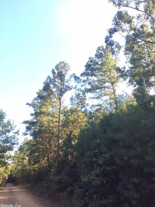 17430 Forest Service Rd. 18, Havana, AR 72842 Photo 22