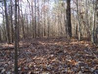 Home for sale: 14 .40 Ac. Deep Branch Ln., Wilder, TN 38589
