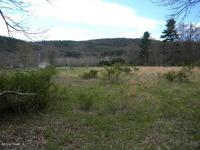 Home for sale: Rt. 590 East, Lackawaxen, PA 18435